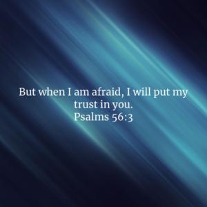 I will put my trust in you
